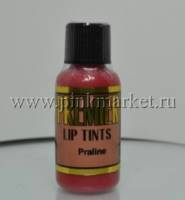 Пигмент для губ Premier Pigments PRALINE CO05. ПРАЛИНЕ.