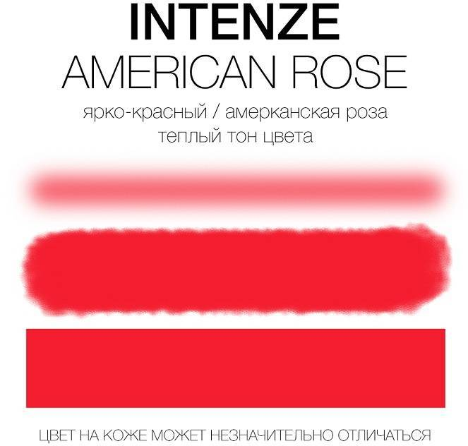 Тату-краска INTENZE American Rose (США), 30мл